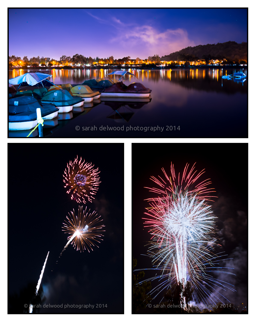 san jose fireworks landscape natural light with sarah delwood photography
