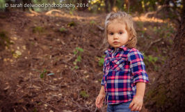 2 year old sunset family session in Santa Cruz Mountains with Sarah Delwood Photography