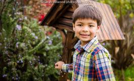 family boys cousins natural light christmas portraits san francisco Sarah Delwood Photography